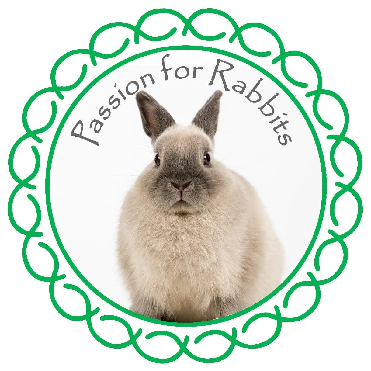 Passion for Rabbits